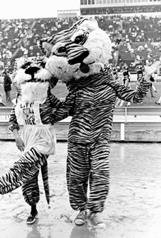 The 1974 Homecoming Version of the Tiger Mascot (with Lil Tiger)
